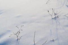 Texture blanche et bleue de neige de fond Photographie stock