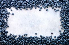 Texture of blueberry berries close up. Border design. Fresh blueberries background with copy space for your text. Vegan. Vegetarian concept. Summer healthy Stock Photography