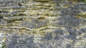 Texture of breakage. Natural texture. Background Royalty Free Stock Images
