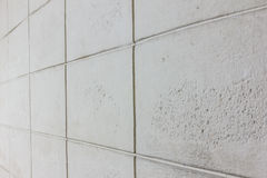 Texture of brick block cement wall. The gray, white texture of brick block cement wall Stock Images