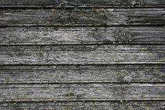 Texture brick wall Stock Photography