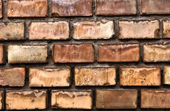 Texture of a brick wall Royalty Free Stock Photography