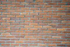 The  texture of brick wall Stock Photos