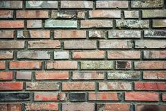 Texture of the brick wall stock image