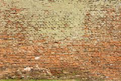 Texture of brick wall full of moss Stock Image