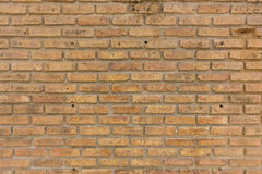 Texture of brick wall Stock Photography