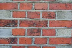 The texture of the bricks. Close-up. royalty free stock image