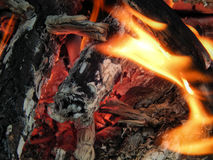 The texture of a bright flame of fire fire Stock Photo