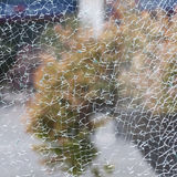 Texture of broken glass Royalty Free Stock Image