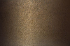 Texture bronze  leather Stock Photography