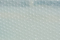 Texture of Bubble Pad. Texture of plastic bubble pad Stock Photography