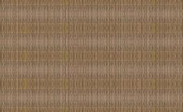 Texture bunch of reed bamboo vertical light endless stripes drawing Stock Photography