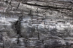 Texture of burnt tree Royalty Free Stock Photography