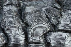 Texture of burnt wood. Royalty Free Stock Photos