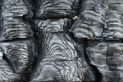 Texture of burnt wood. Stock Image