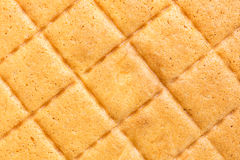 Texture of butter cake Stock Photography