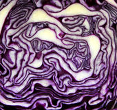 Texture of cabbage Stock Photography