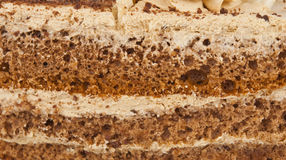 Texture of the cake Stock Image