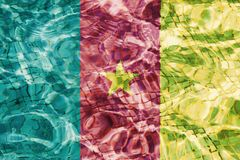 Flag of Cameroon. Texture of Cameroon flag in the pool, water. Splashes stock photography