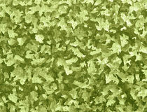 Texture camouflage, sand color. Texture camouflage, green-colored, abstract shapes Stock Photography