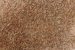 Texture of a carpet Stock Photos