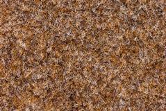 Texture of carpet coverage Stock Photo