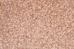 The texture of the carpet . Detailed beige background . Stock Photos