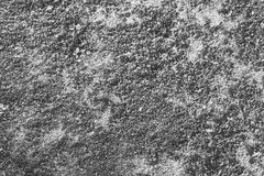 Texture of cement. Rntexture of floorrntexture of wall Stock Photo