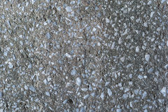Texture of cement. Rntexture of floorrntexture of wall Royalty Free Stock Image