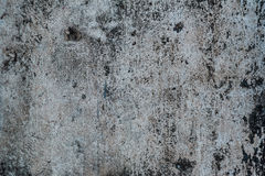 Texture of cement. Rntexture of floorrntexture of wall Royalty Free Stock Images