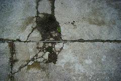 Texture of a cement floor ruined Stock Image
