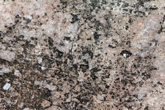 Texture of cement street Stock Photo