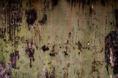 Texture of cement. Dust floor Stock Image