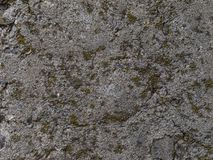 Texture of the cement wall. Royalty Free Stock Photography