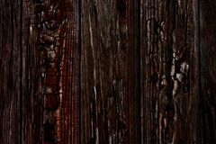 Burnt wood texture close-up with natural pattern stock image