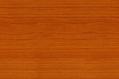 Texture Cherry. High quality cherry wood grain texture Royalty Free Stock Photo