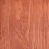 Texture cherry, tree background Royalty Free Stock Photo