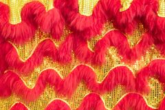 Texture of the Chinese lion`s body celebrates Chinese New Year of Chinese. stock image