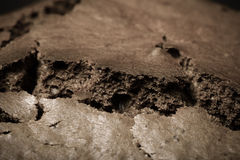 Texture of chocolate cake for edible background. Toned Stock Images