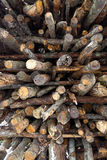 Texture of chopped logs lying in stack Stock Photography
