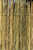 texture cienki ścienny drewnianego zdjęcie stock