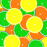 Texture of citrus fruits Royalty Free Stock Photo
