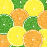Texture of citrus fruits Stock Photos
