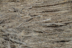 Texture of the classic thatch roof Royalty Free Stock Image