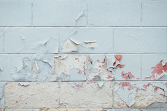 Texture Close Up of Chipped blue peeling paint, covered with cru Royalty Free Stock Photo
