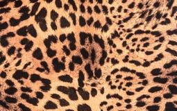 Cheetah Fur Close Up Cheetah Print F...