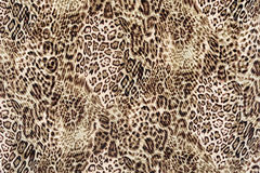 Texture of close up print fabric striped leopard Royalty Free Stock Image