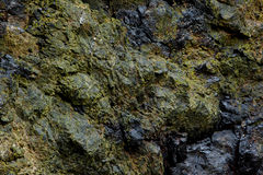 Texture, close-up of wall rocks Royalty Free Stock Images