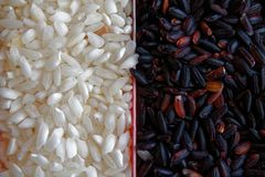 Texture of Coarse black and white rice The concept of proper nutrition and healthy lifestyle. Top view, close-up as background or. Texture Stock Images