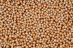 The texture of coarse dry peas horizontal Stock Image